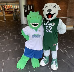 Gabby the Gator and Iggy the Greyhound at the Loyola Notre Dame Library